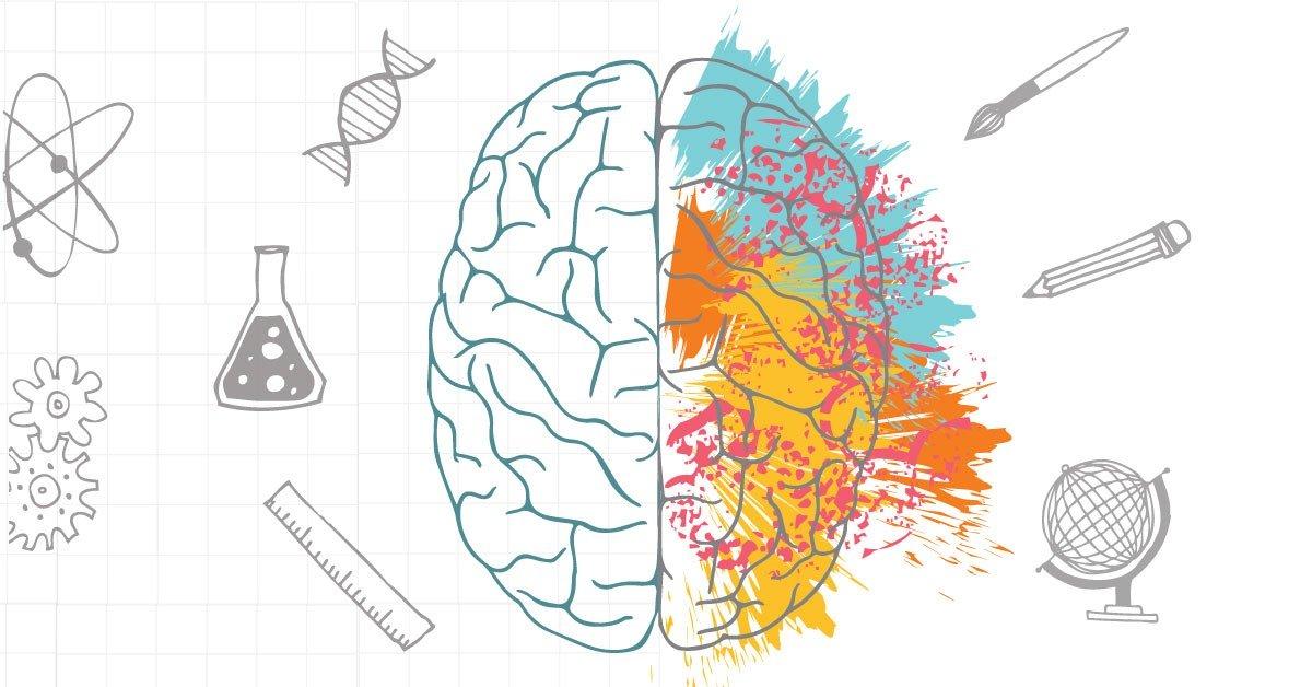 Music & Brain Function