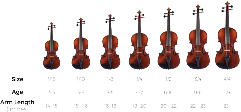 violin-size